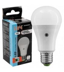 CFG Fulmina insetti Attrae Aspira e Fulmina gli Insetti Attivi di Sera e di Notte 8W 800V